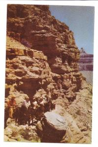 Grand Canyon Kaibab Trail Mules Riders Fred Harvey Chrome