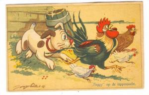 Dog chases Chickens, 30-40s