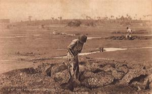 The Pitch Lake, Trinidad, Early Sepia Postcard, Unused