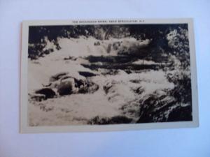 Vintage rppc RAPIDS IN SACANDAGA RIVER Speculator New York NY Postcard y7275
