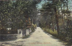 Springfield Avenue Bermuda