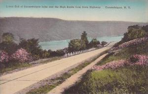 New York Canandaigua Lower End Of Canandaigua Lake And The High Banks From St...