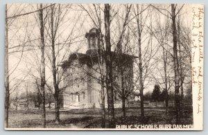Burr Oak Michigan~Public School in Trees~Cupola~Plank Fence~Got My Start~c1907
