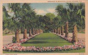 Florida Silver Spring Entrance To Beautiful Silver Springs