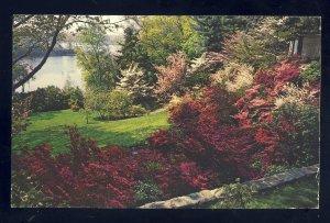 Cranston, Rhode Island/RI  Postcard, Winsor Azalea Garden, Marden Street