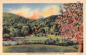 Brownville Junction Maine Greetings Scenic View Vintage Postcard JD933807