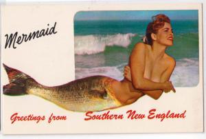 Mermaid - Southern New England