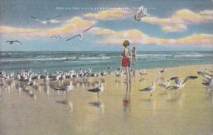Florida Daytona Beach Feeding The Seagulls 1950