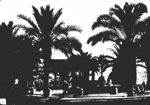 Libya Tripoli Meadan al Shuhadat 1960 Photo