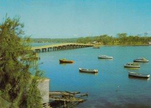 TOUKLEY , N.S.W. ,  Australia , 50-70s ; Bridge