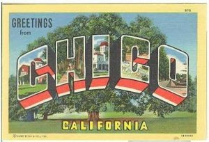 pc7946 postcard Chico California Large Letter MOBSC