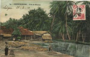 CPA Vietnam Indochine COCHINCHINE - Coin de Brousse (60834)