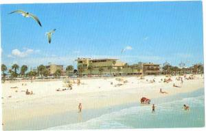 Clearwater Beach & Motels from Big Pier 60, Florida FL