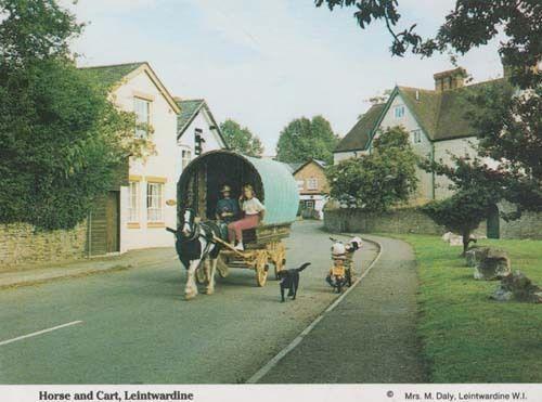 Leintwardine Hereford Village Old Horse & Cart Romany Gipsy Style Postcard