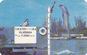 Buttons The Jumping Porpoise Theatre Of The Sea Islamorada Florida
