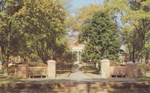 Autumn Trees, Entrance to Anderson College, Anderson, South Carolina, 40-60´s