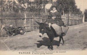 DONKEY ; Tanger , Morocco , 1900-10s ; Man on Donkey