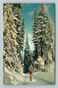 Tacoma WA- Washington, Winter Wonderland, Chrome c1961 Postcard