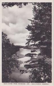 Maine Fryeburg Saco River From Fryburg New Church Assembly Albertype