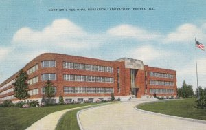 PEORIA, Northern Regional Research Laboratory, Illinois, 30-40s