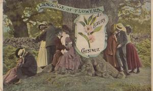 The Language Of Flowers Chestnut Tree Kissing Under Antique Postcard