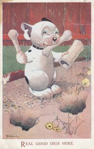 Real Good Digs Her Dog Comic Old Postcard