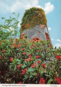 Barbados Old Sugar Mill Ruins