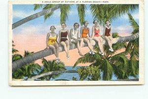 Bathing Beauties on Florida Beach Palm tree