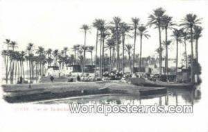 Egypte Eqypt Vue de Bedrechen Egypte Vue de Bedrechen