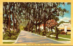 Florida Deland Oak Lined Clara Avenue 1947 Dexter Press