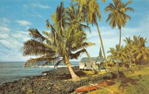 St. Peter's Church, Kona Coastline, Hawaii ca 1950s Nani Li'i Vintage Postcard