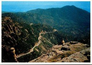 Arizona Tucson Scene In The Catalina Mountains