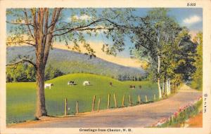 Chester New Hampshire Scenic Roadway Greeting Antique Postcard K96520
