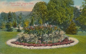Seneca Park, Rochester, New York - Flower Beds - pm 1913 - DB