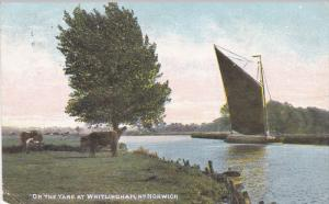 NORWICH, Norfolk, England, United Kingdom; On the Yare at Whitlingham, Sail B...