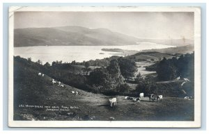 RPPC Windermere from above Ferry Hotel Postcard Abrahams Series Sheep