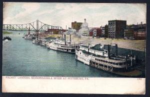 Paddlewheel Steamer Landing Monongahela River used c1907