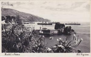 RP: MADEIRA , Portugal ,1920-30s ; Ocean Liners at anchor , FUNCHAL