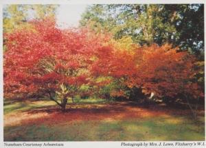 Nuneham Courtenay Arboretum Oxfordshire Womens Institute Postcard