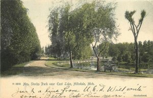 H4818. Mrs Stocks Park Near East Lake. Hillsdale, MI Handcolored Postcard