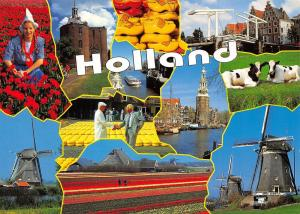 Holland traditional typical scenes, souvenir, tulips, cheese, kaas