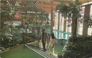 Plymouth Michigan~Hilton Inn~Atrium~Man With Plaid Suit Coat 1960s Postcard