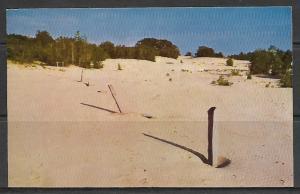 Maine, Freeport - Original Stone Boundary Line - The Desert Of Maine - [ME-105]