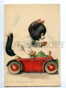 140796 Dressed CAT in Small CAR vintage COMIC colorful PC