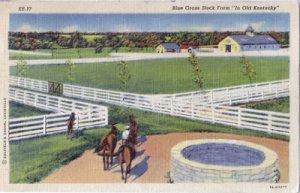 KENTUCKY BLUE GRASS STOCK FARM  1930s