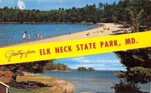 Elk Neck State Park Maryland~Banner Greetings~Beaches~Picnic~1950s Postcard