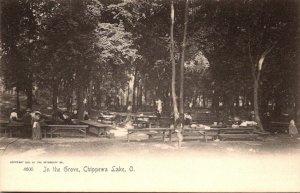 Ohio Chippewa Lake In The Grove Rotograph
