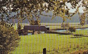 Historic Covered Bridge Cathtanmet Washington
