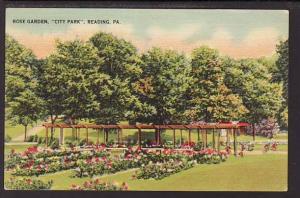 Rose Garden City Park Reading PA Post Card 5230