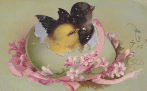 EASTER; 1900-10s; Black & Yellow Chick cracking out of green egg, Pink ribbon...